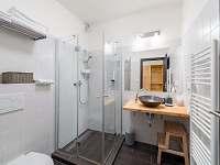 koupelna s wc a sprchou (ap. 1, 3, 4, 5) - pronájem chalupy Sychrov - Vrchovina