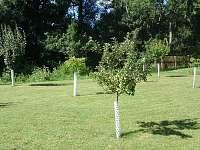 Apartmán - zahrada