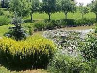 Rybník - pronájem chalupy Rovensko pod Troskami - Václaví