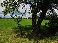 Chuchelna - Lhota - chalupa k pronájmu - 19