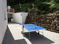 Ping-pong 1 - chalupa ubytování Mašov