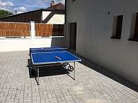 Ping-pong - chalupa k pronajmutí Mašov
