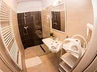 Apartmán Tylova 515 - apartmán ubytování Jičín - 9