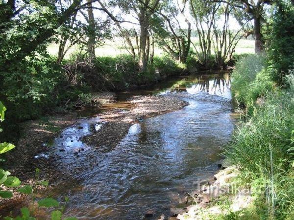Lužnice - řeka