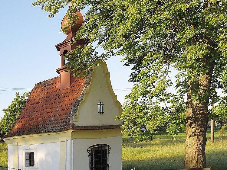 Obec Šalmanovice