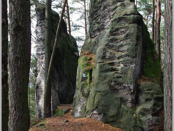 Přivýšina u Prachovských skal