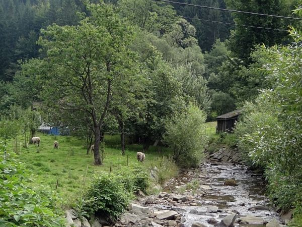 Řeka Lomná (Lomňanka)