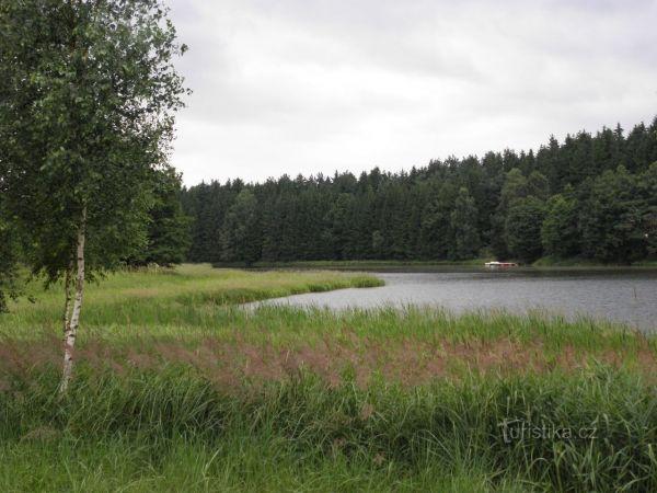 Rybník Komorník mezi Strmilovem a Kunžakem