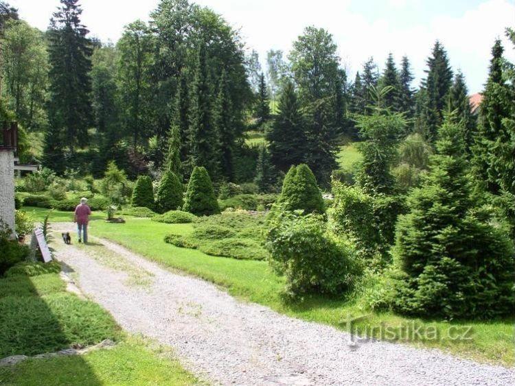 Soukromé arboretum