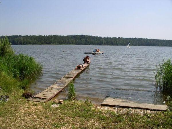 Staňkovský rybník