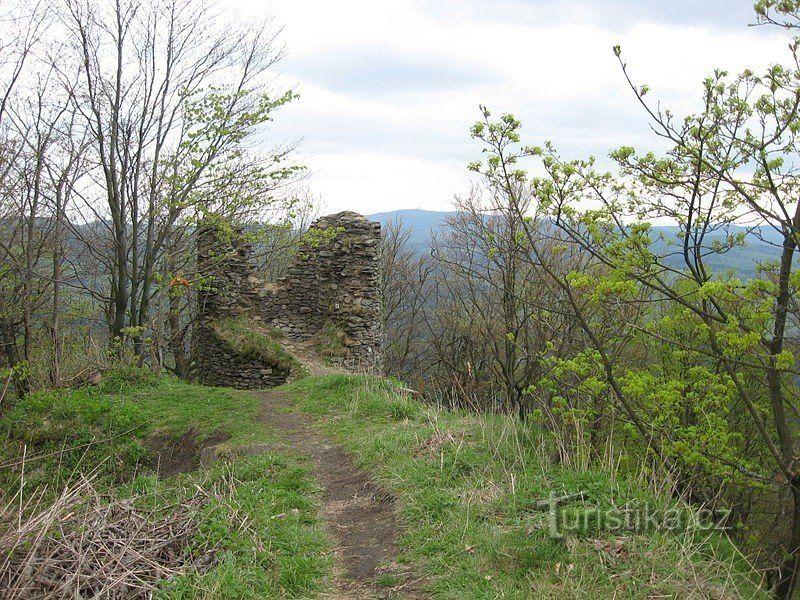 Starý Herštejn - přírodní rezervace