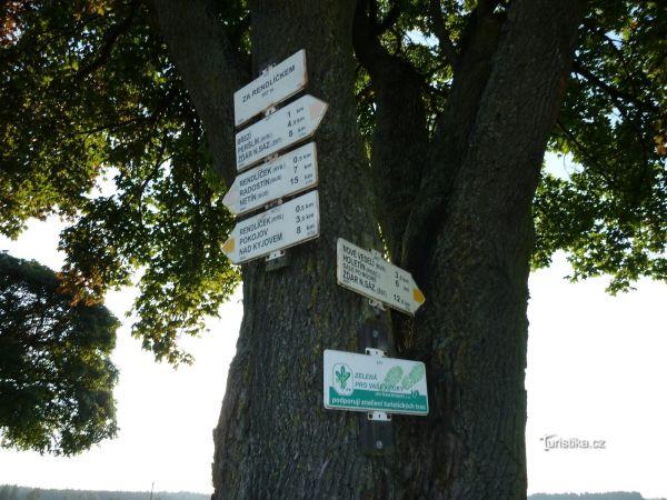 turistické rozcestí Za Rendlíčkem