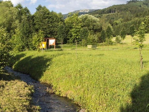 Vernířovice - rybníčky