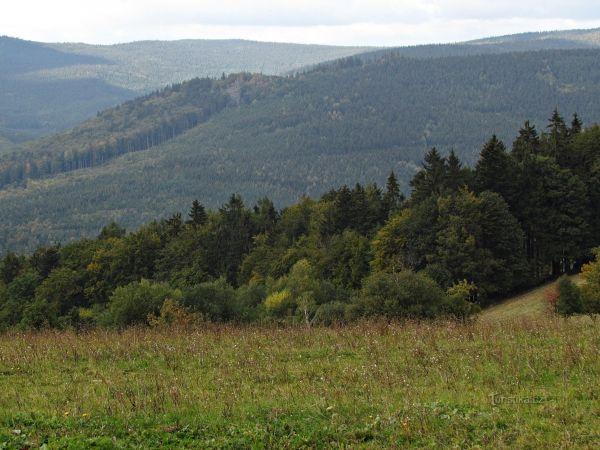 Vyhlídková cesta Ferdinandov - Dobřečov