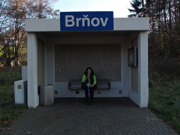Železniční zastávka v Brňově