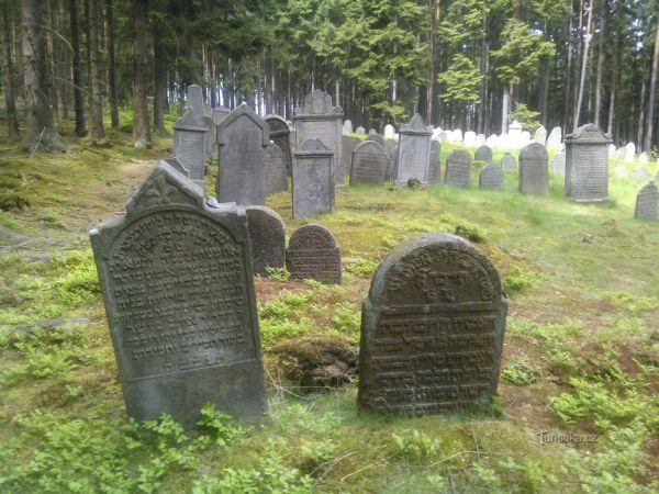 Židovský hřbitov Drmoul