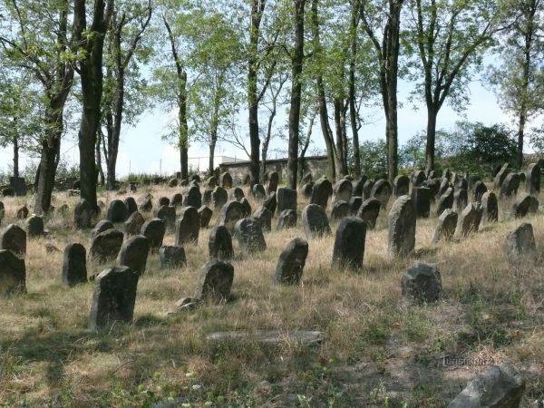Židovský hřbitov Libochovice