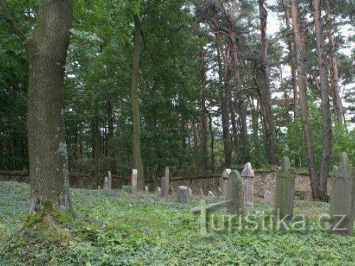 Židovský hřbitov u Mutěnína
