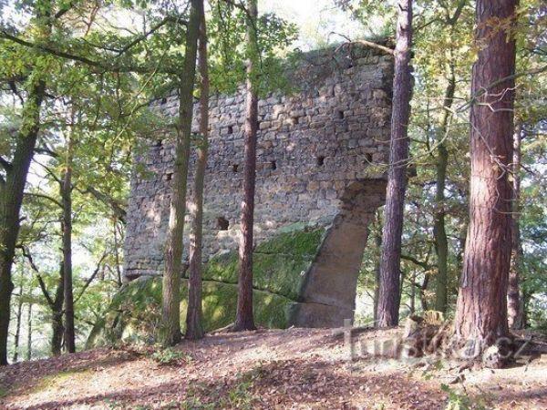 Zřícenina hrádku Vítkovec nedaleko Holan
