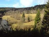 stráň nad chalupou - pronájem Bukovice u Velkých Losin