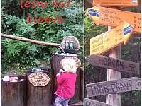 Lesní bar Lipová Lázně - Hostice