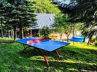 Rezidence Kouty - chalupa - 40