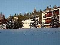 Levné ubytování Rybník Andělská Hora Chata k pronájmu - Karlov pod Pradědem