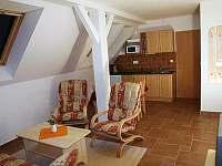 Dolní Moravice - apartmán k pronájmu - 8