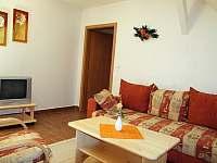 Dolní Moravice - apartmán k pronájmu - 13