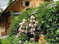 Chata u Vlastíka Malá Morávka - ubytování Malá Morávka