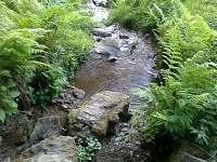 Vysoký Potok - Malá Morava  - chalupa k pronajmutí - 19