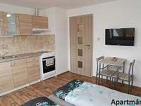Apartmán 2 - k pronajmutí Bělá pod Pradědem - Domašov