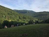 foto z lesa nad chatou