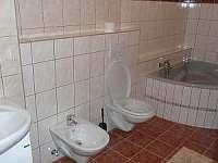 koupelna s rohovou vanou a bidetem v apartmánu - chata ubytování Stříbrnice