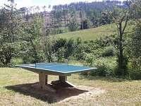 zahrada, stolní tenis - pronájem chaty Stříbrnice