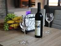 Vinotéka víno Petratur - chata k pronajmutí Dolní Bušínov