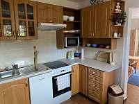 plně vybavená kuchyň - apartmán k pronajmutí Česká Ves