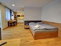 Apartmán Petronela - vila ubytování Karlov pod Pradědem