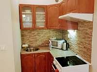 Apartmán - obývací pokoj s kuchyní - pronájem Karlovice