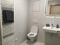 Apartmán u sjezdovky - apartmán - 17 Filipovice