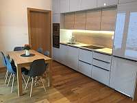 Apartmán u sjezdovky - apartmán k pronajmutí - 4 Filipovice