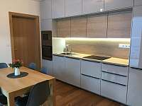 Apartmán u sjezdovky - apartmán ubytování Filipovice - 5