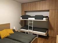 Apartmán u sjezdovky - apartmán - 13 Filipovice