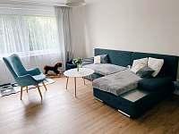 Obývací pokoj - chalupa ubytování Hanušovice