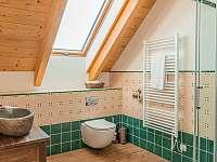 koupelna se sprchovým koutem - chalupa k pronajmutí Branná