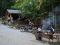 Lesní bar, ilustrační foto - Nové Losiny