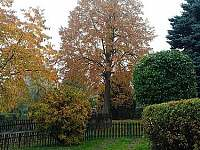 Chalupa SOVA v Dobřečově - podzim -
