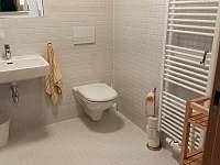 Apartmán ve Filipovicích - apartmán k pronájmu - 22 Bělá pod Pradědem - Filipovice
