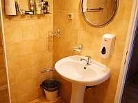 Apartmán č.6 koupelna - Rýmařov