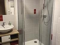 Koupelna s WC - apartmán k pronajmutí Loučná nad Desnou